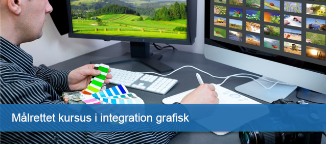 Kursus i integrations grafik