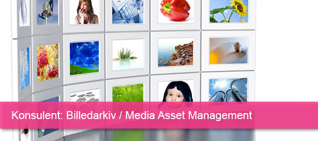 Konsulent Media Asset Management